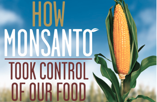Monsanto Infographic